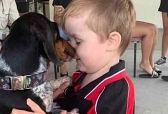 Meningococcal tragedy: A QLD family mourn the loss of their little boy who contracted the deadly disease this week