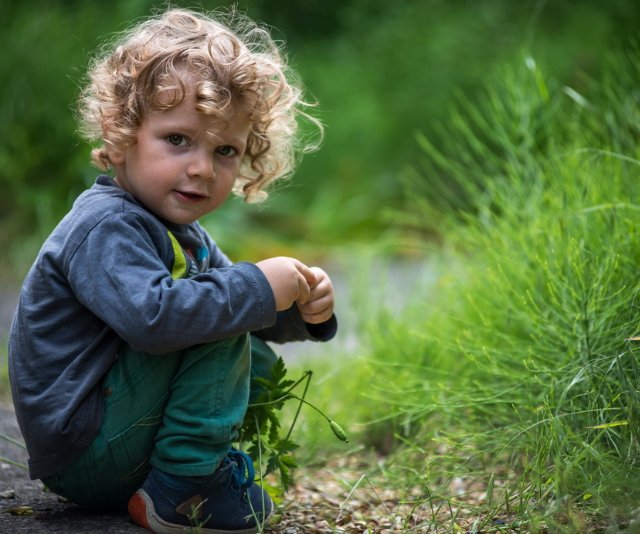 Cute curly haired toddler squatting on the ground amongst green grass