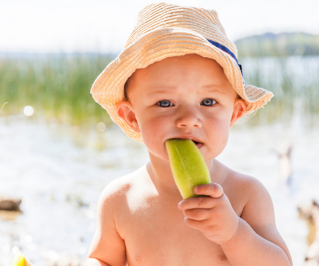 Cute teething baby sitting on beach wearing a straw sun hat while sucking on a slice of cucumber.