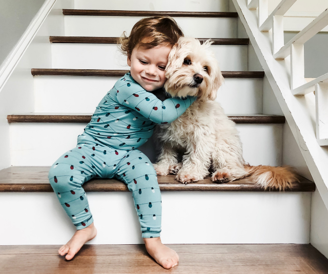 Cute baby boy wearing teal coloured onesie sitting on bottom step while hugging a fluffy white dog around the neck.