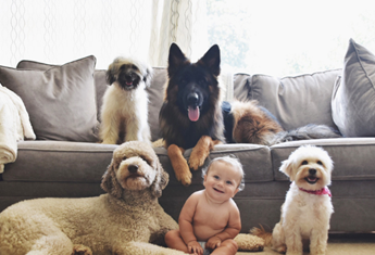 The most popular baby names make the best puppy names too!