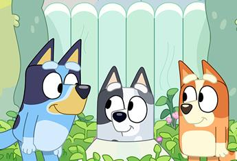Wackadoo! Everything you need to know about the hit show, Bluey