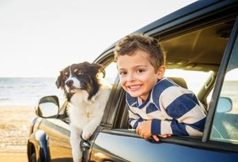 The benefits of owning a pet and how to teach your children about pet care