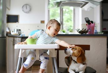 8 of the best highchairs to make mealtimes a blast